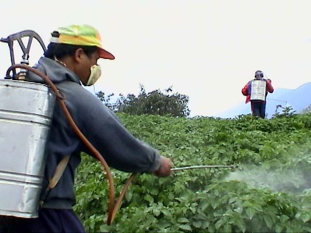 pesticide_spray1a