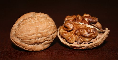Two_Walnuts sm